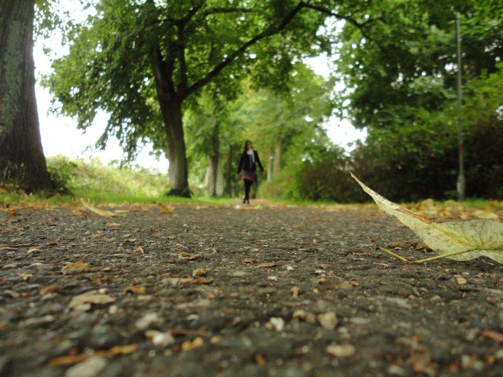 viaja sola por Roskilde